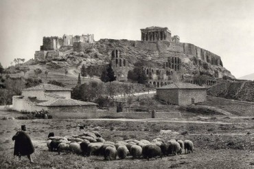 2013-08-06_01_Athens Old Photo Shepherd Sheep Greece