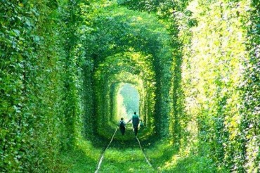 2013-11-07_05_Tunnel of Love Rivne Region Ukraine Beautiful Trees People Walk