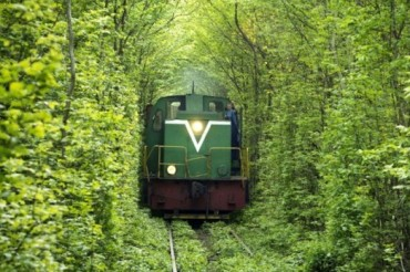 2013-11-07_05_Tunnel of Love Rivne Region Ukraine Beautiful Trees Train