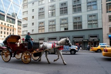 2014-04-22_03_New York-horse-drawn carriage